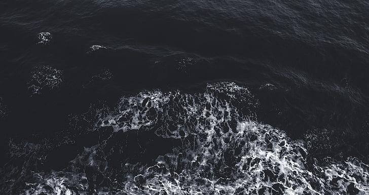 platja, fred, fosc, Alba, capvespre, escuma, natura