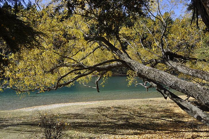 nature, landscape background, nature landscape