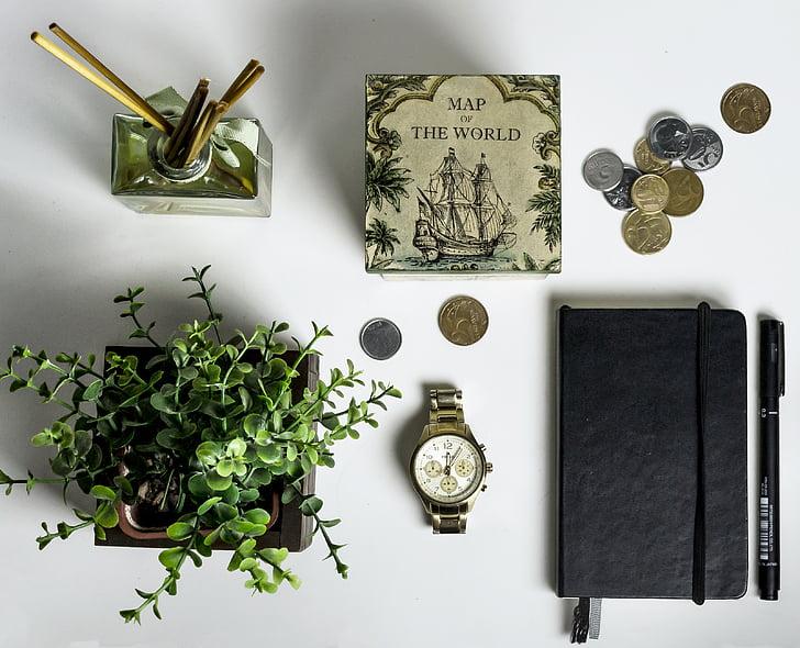 obiekty, Pokój, Zegarek, roślina, pudełko, pieniądze, monety