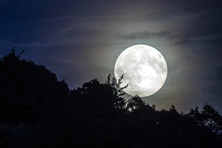 cel de nit, llum de lluna, Lluna, estat d'ànim, cel de nit, abendstimmung, súper lluna