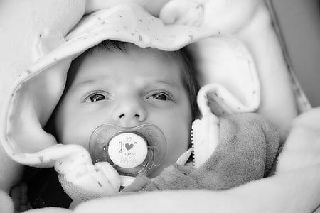 nadó, nen, nen petit, cara, Naixement, noi, noia