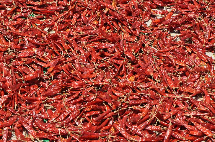 toidu, tšilli, punane, Spice, pipar, kuum, Cooking