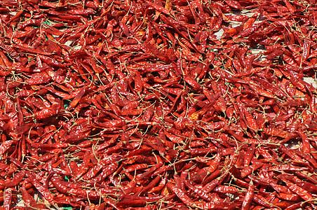 hrana, čili, Crveni, začin, papar, vruće, kuhanje