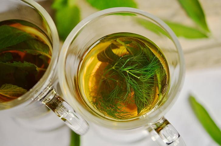 te d'herbes, herbes, Samarreta, fonoll, menta, Sàlvia, aroma de