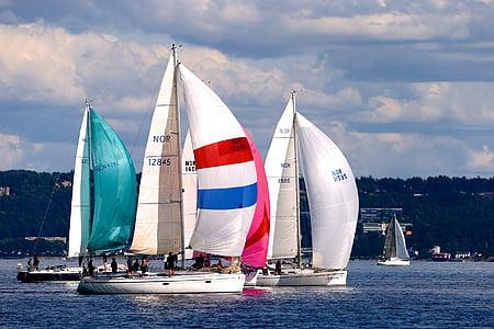 segling, segelbåt, havet, sommar, idrott, segel, nautiska fartyg