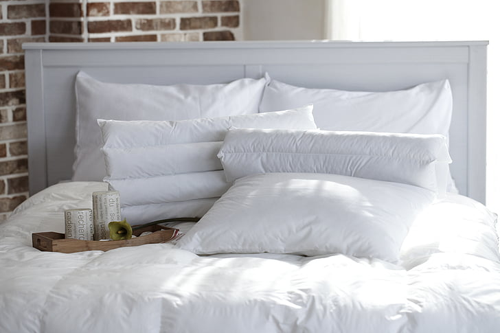 pillow, bedroom, dragonfly, quilt, white color, bed, indoors