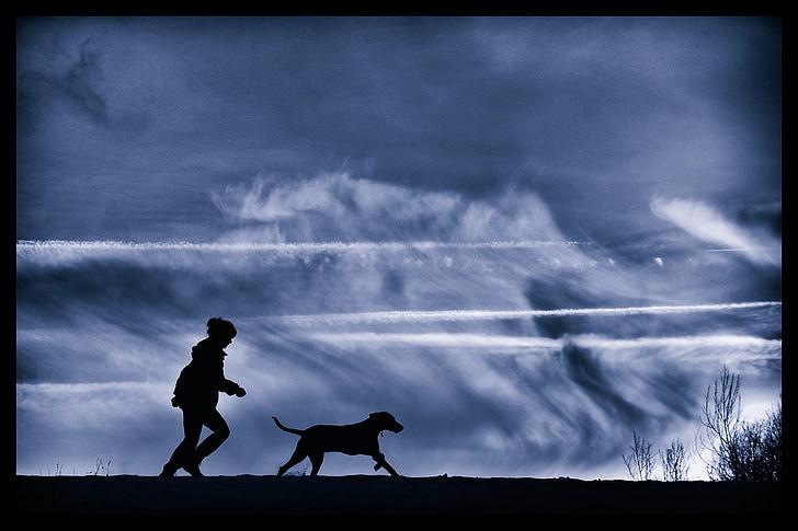 home i gos, silueta, Weimar executar