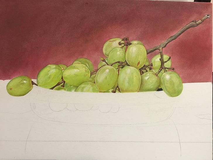raïm, dibuixos, pintura, bodegons, llapis de color