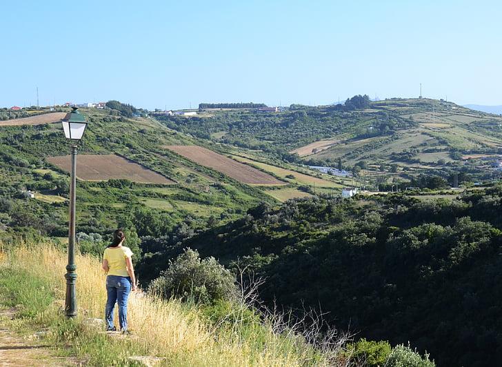lauko, Campestre, kraštovaizdžio, vieta, Gamta, augalija, kaimo