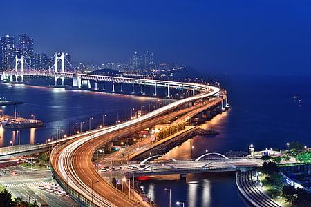 busan night scene, gwangan bridge, night, sea, night view, busan, highway