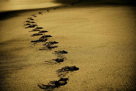 ทราย, รอยเท้า, รอยเท้า, ชายหาด, ชายฝั่ง, เดิน, โอเชี่ยน