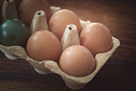 ou, ous de gallina, marró, color, ous de Pasqua, ouera, ouera