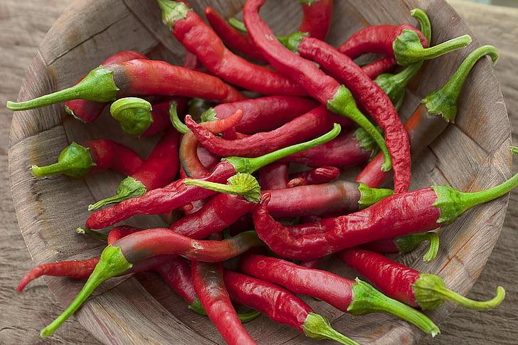 chillis, tšillipipar, aiandus, taimne, kuum, Vürtsikas, pipar