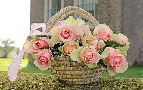 Roses, nobles roses, cistella, flors, Rosa, Roses roses, Rosa roden preciosos