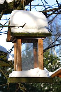 bird, feeder, winter, snow, garden, nature, outdoor