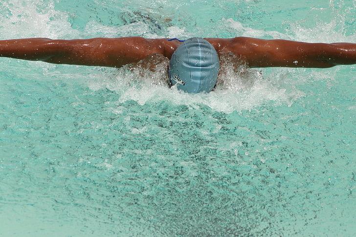 nedador, Natació, dona, competència, l'aigua, piscina, femella