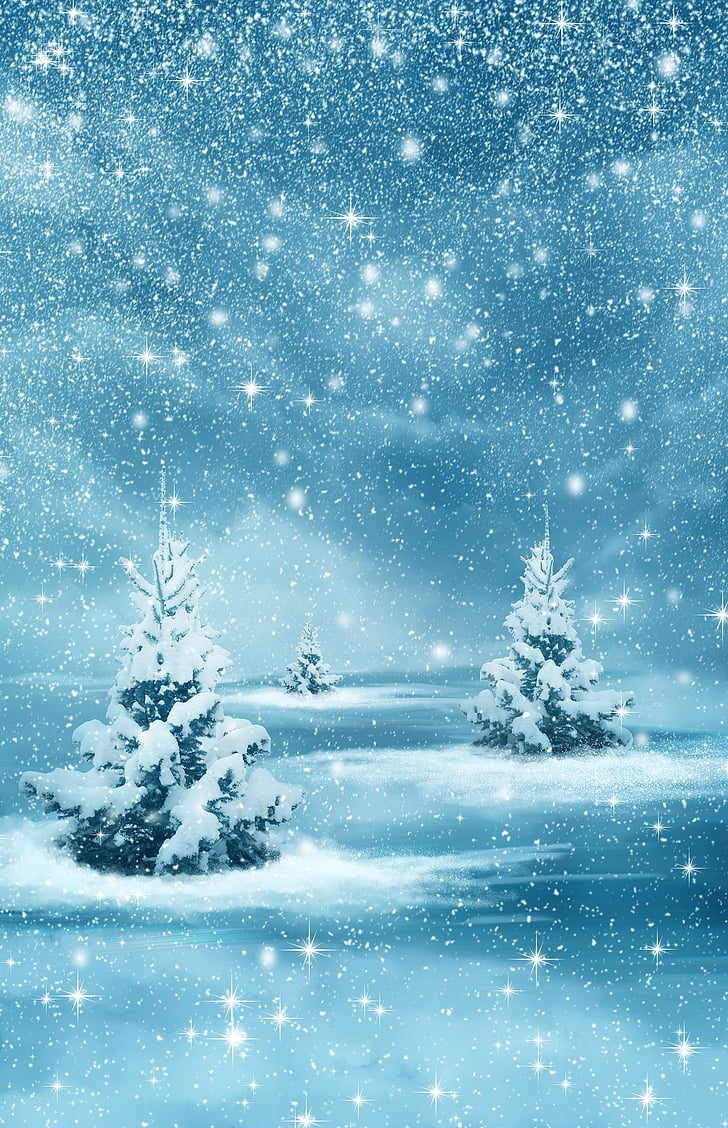 christmas, new year, background, winter, nature, forest, trees