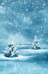 Vianoce, Nový rok, pozadie, zimné, Príroda, Forest, stromy