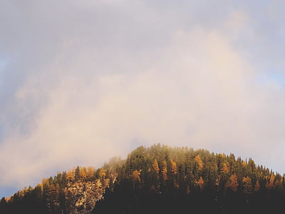 sky, autumn landscape, nature, outdoor, fall, forest, countryside