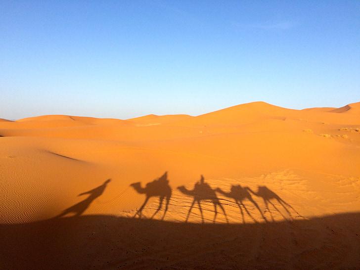 Sahara, pijesak, priroda, pustinja, suha, Afrika, putovanja