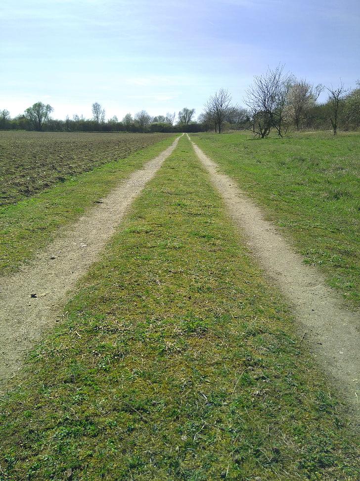 way, field, country, path, farm lane, country lane, grass