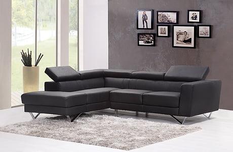 sofà, sofà, sala d'estar, casa, interior, catifa, moderna