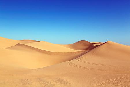 пустыня, Дюна, algodones дюны, дюны, песчаные дюны, песок, Природа