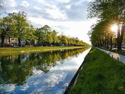뮌헨, nymphenburg 채널, 애비뉴, 남쪽 진입도로, 나무, 태양, abendstimmung