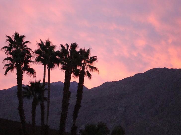 Szabad fotó: Palm springs, California, hegyek, pálmafák, naplemente,  színes, felhők   Hippopx