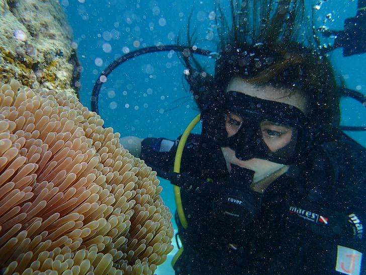Marina, Submarinisme, Mar, Coral, anemones de mar, Peix pallasso, ulleres