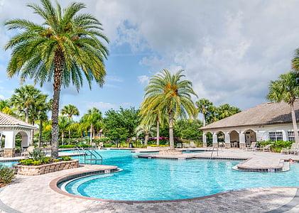 basseng, Tropical, folk, person, svømming, Resort, vann