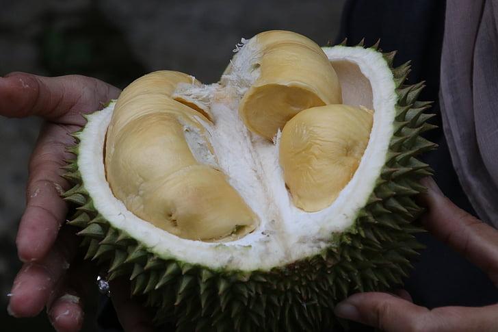 Durian, kralj sadja, eksotično sadje
