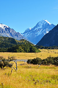 prairie, snow mountain, the scenery, beautiful, new zealand, mountain, nature
