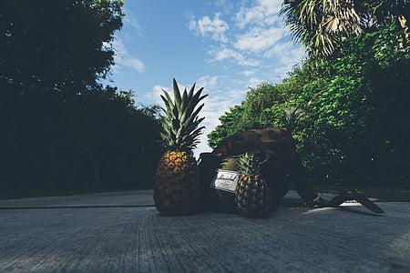 ransel, tas, kamuflase, awan, beton, buah, sehat