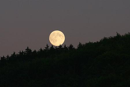 Lluna, Lluna plena, llum de lluna, fotografia de nit, súper lluna
