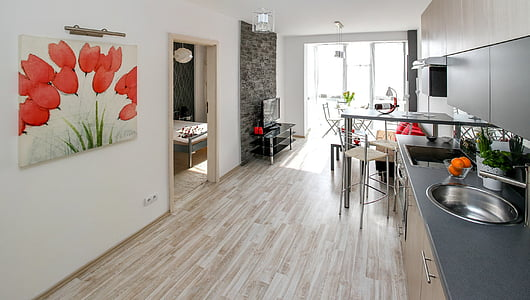 Apartament, Cameră, Casa, rezidential de interior, interior design, decor, apartament confortabil