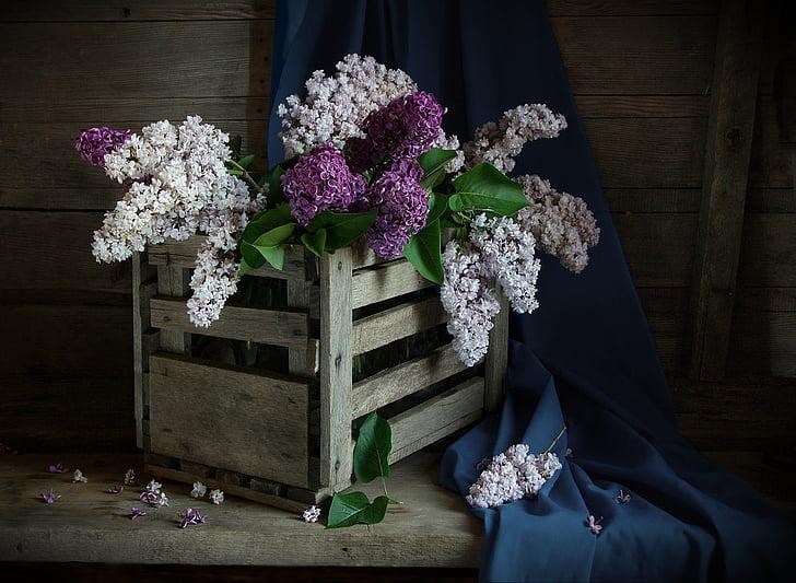 bodegons, lila, ombra, RAM, casament, fusta - material, flor