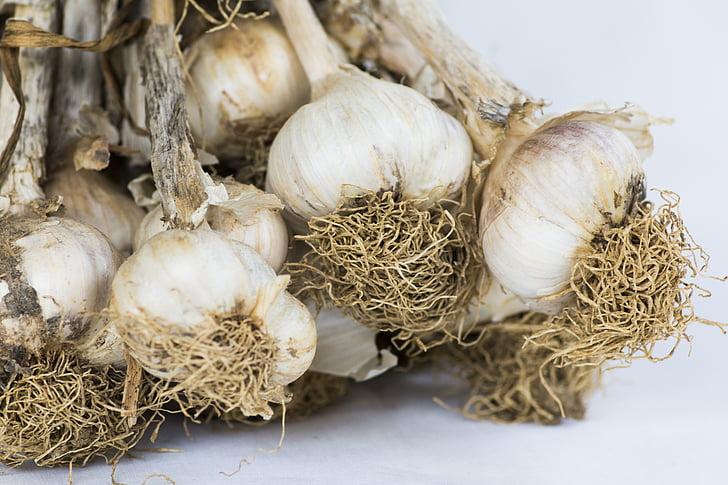 cesnak, hlavy cesnaku, korenie, rastlina žiarovky