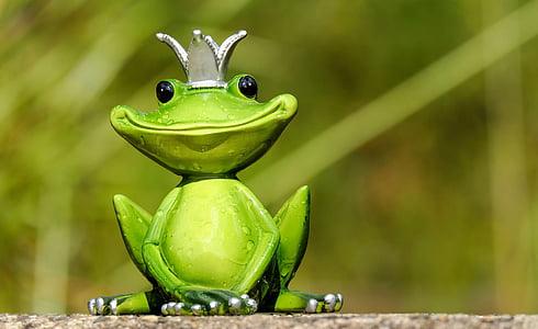 sammakko, kuva, kuningas, Söpö, Hassu, Makea, hauskaa