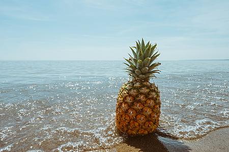 Bãi biển, trái cây, chân trời, Đại dương, dứa, Cát, tôi à?