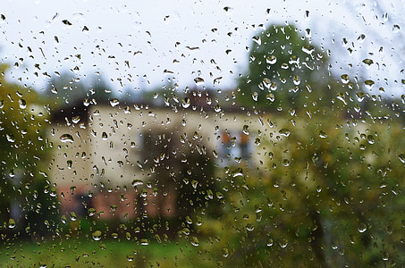 rain, drops, drops of water, the background, pane, rain drops, water