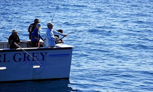 fish, deep sea fishing, boot, angler, fishing boat, waters, catch fish