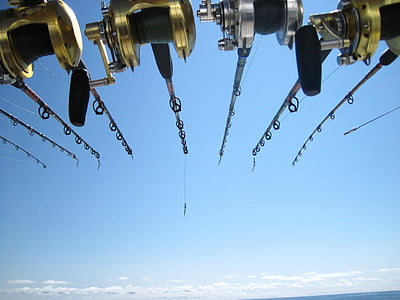 fishing, deep sea, fishing rods, fish, marine, sport, reel