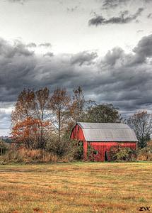 skedenj, rdeča, jeseni, nebo, oblaki, na prostem, scensko