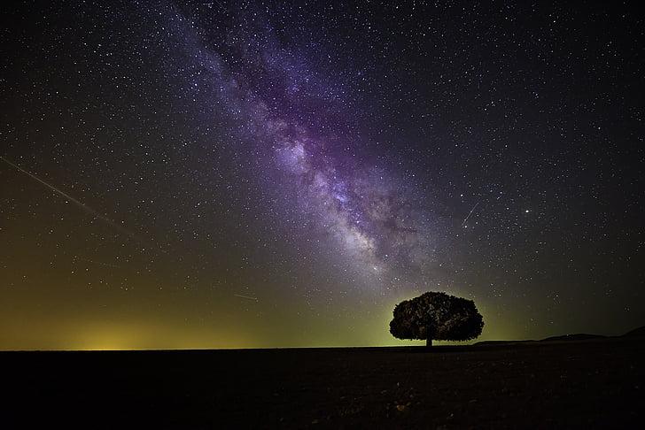 Cosmo, escuro, wallpaper HD, Via Láctea, à noite, silhueta, céu