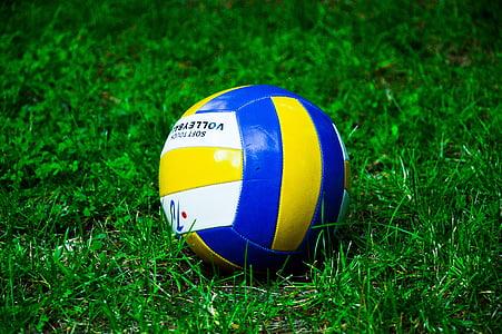 топка, футбол, играта, спорт, игра, конкуренцията, поле