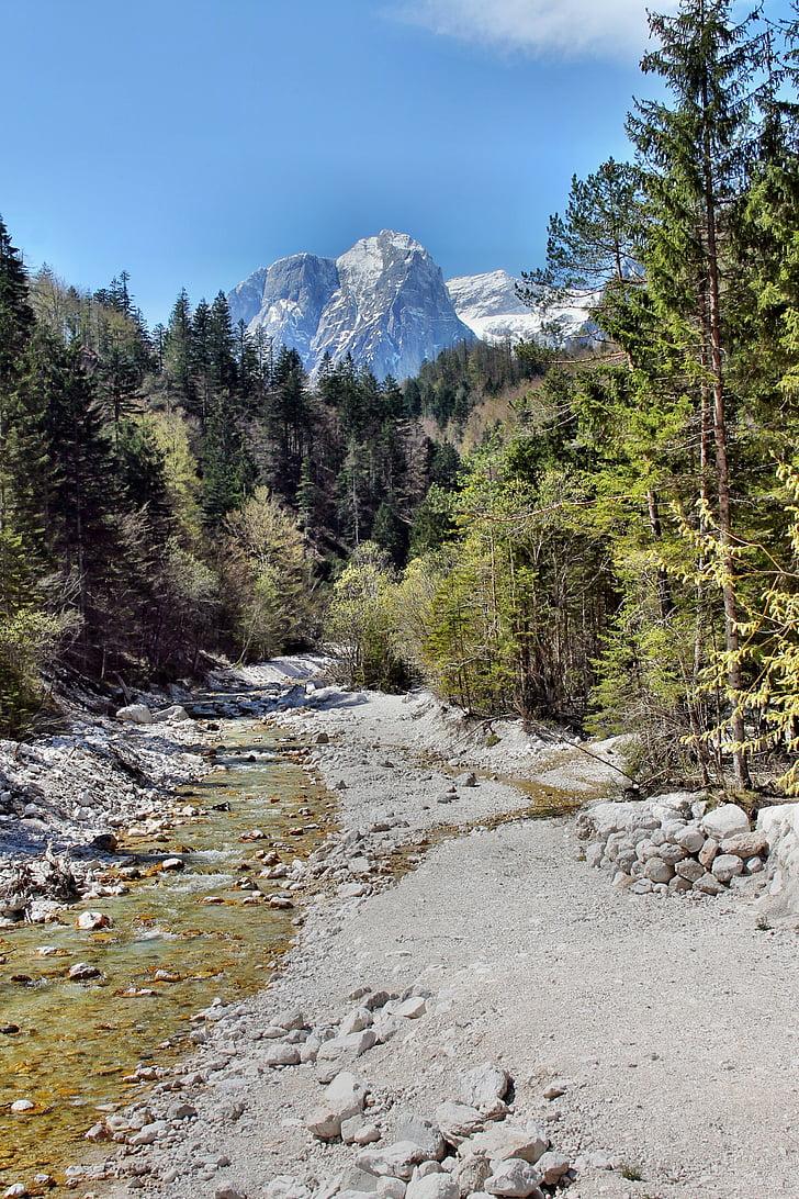 slovenia, nature, mountains, trees, clear, landscape