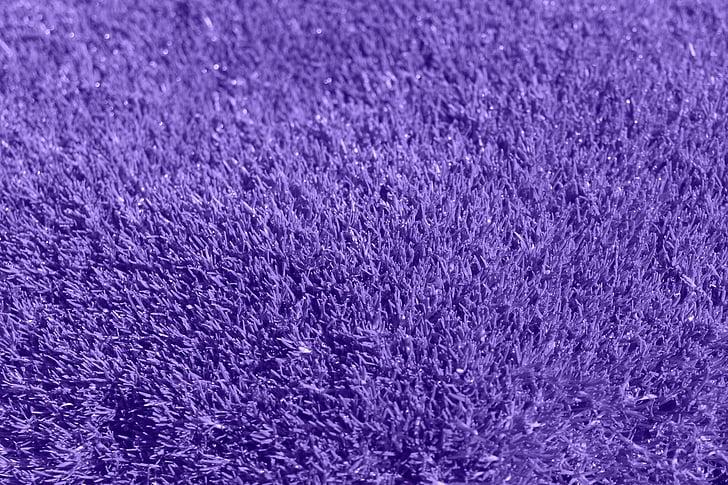 nền tảng, màu tím, cỏ, Lilac, thảm, Vải, nguồn gốc