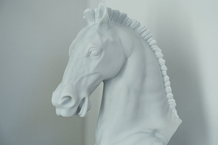 cheval, marbre, tête de cheval, sculpteur, Craft, art
