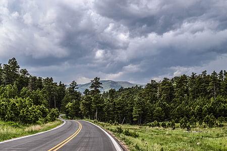 Road, motorväg, land, gräs, träd, bergen, Sky